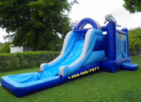 bounce_house_dolphin_pool.jpg